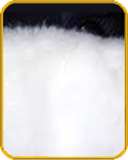 Whitefur-tile