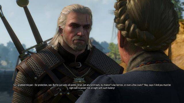 File:The-Witcher-3-Wild-Hunt-Side-Quest-Dialogue.jpg