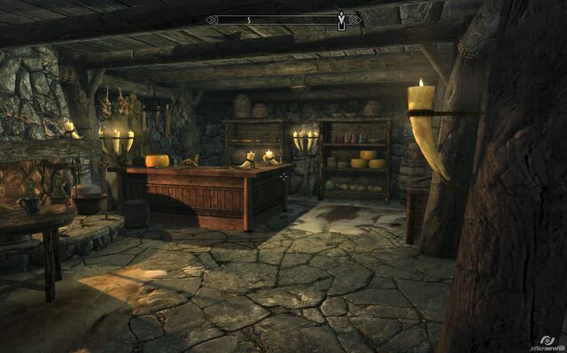 File:Riverwood Trader inside Skyrim.jpg
