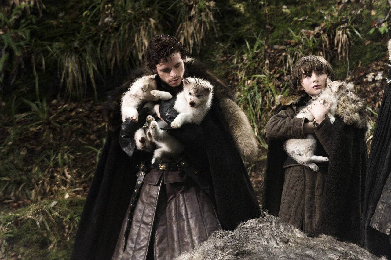 Robb and bran of Game of thrones and direwolf pups