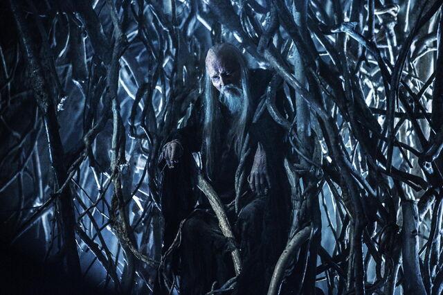 File:Game-of-thrones-season-4-finale-tree-man.jpg