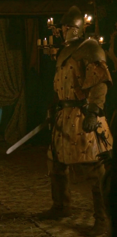 File:Renly's Kingsguard 2.png