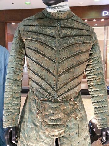 File:Loras, Season 5 sparring outfit.jpg