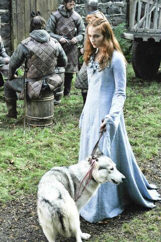 File:Sansa and lady.jpg