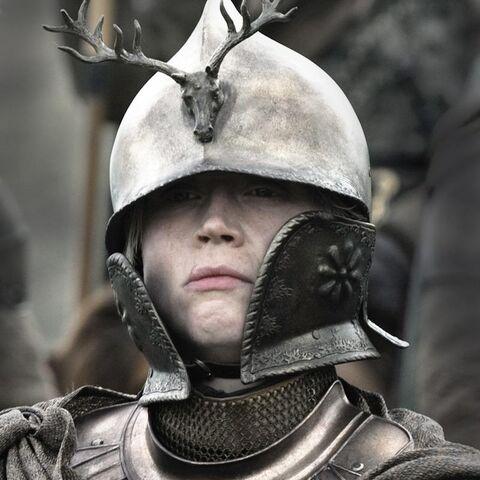 Vaizdas:Brienne Kingsguard helmet.jpg