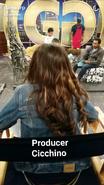 Producercree