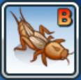 File:B-cricket.png