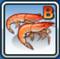 B-shrimp