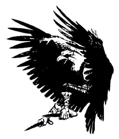 File:Hawkoid.jpg
