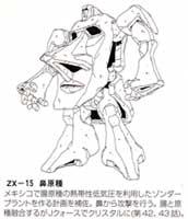 ZX 15