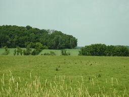 Eau Claire County Wisconsin B