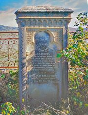 Jannet Shand (1810-1880) Tombstone