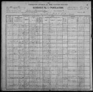 Census of Lake Township Wabasha County Minnesota 1900 pg04