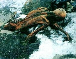 Another picture of the Iceman from other side, now exposed to just below the waist with the arms partially exposed