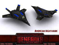 American Nighthawk New