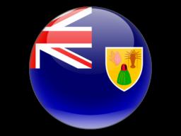 File:TCA Flag.png