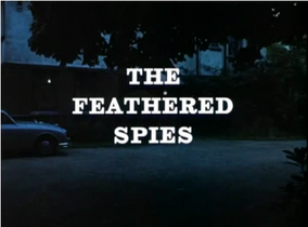 The Feathered Spies
