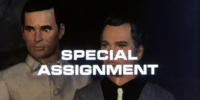 Special Assignment