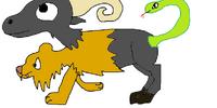Chimera (species)