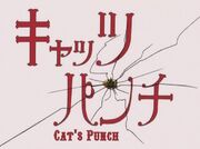 Cats-punch-OP