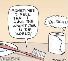 File:Toothbrush and toilet paper.jpg