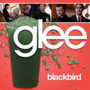Glee - blackbird