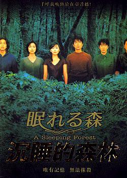 檔案:沉睡的森林.JPG
