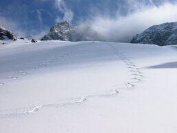 Alta-snowbird-ski-area-condominium-vacation-rental-18