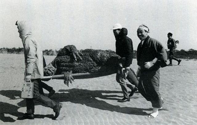 File:Godzilla -MosuGoji- Passes Out.jpg