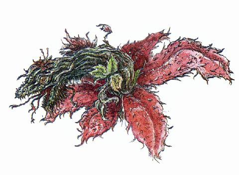 File:Concept Art - Godzilla vs. Biollante - Biollante Rose 15.png