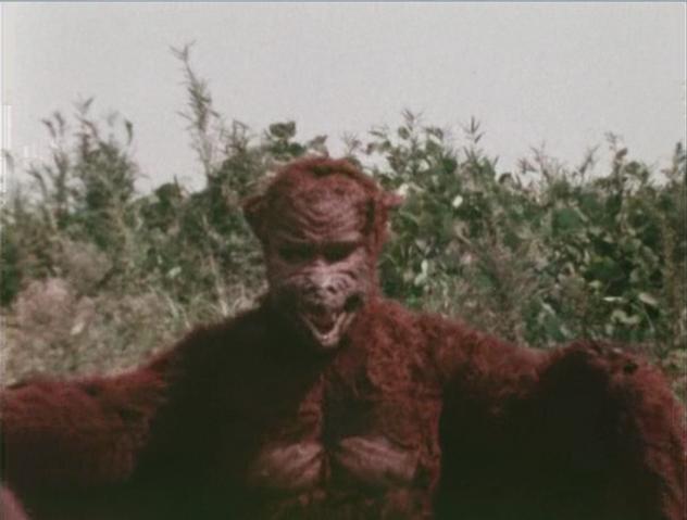 File:Go! Godman - Godman vs. Batman - 3 - In front of bushes.png