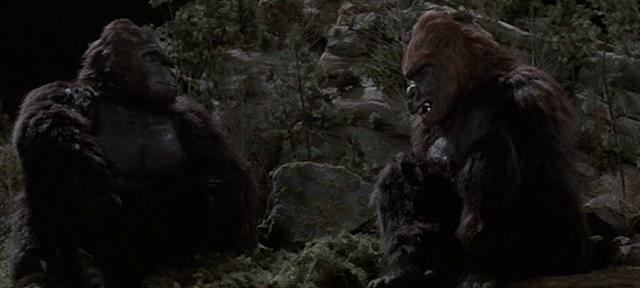 File:King Kong and Lady Kong.png