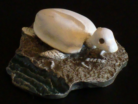 File:Mystery Bones Of Infant Island Figure 1.jpg