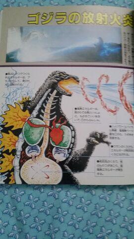 File:Another Godzilla anatomy againimage.jpeg