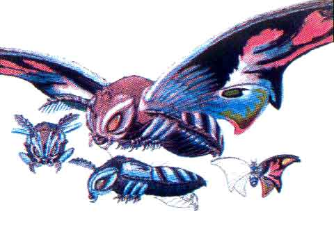 File:Concept Art - Rebirth of Mothra 3 - Mothra Leo 4.png