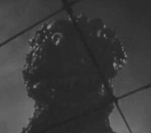 File:ShodaiGoji-Derp-face.jpg