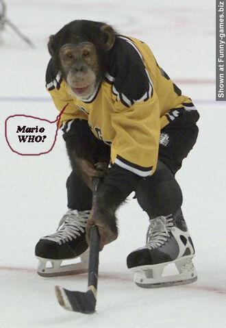 File:Hockey Monkey.jpg