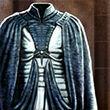 Robin's Surcoat