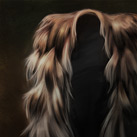 Wildling Furs