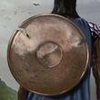Shield of the Follower
