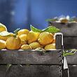 Lemon Crate