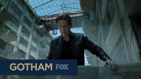 This Fall On Gotham & Lucifer GOTHAM
