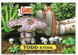 Todd Stool