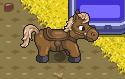 Horse-0
