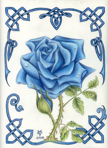 File:Blue Rose by robertsloan2.jpg