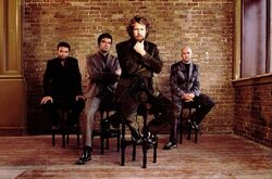 TGT Hothouse Flowers