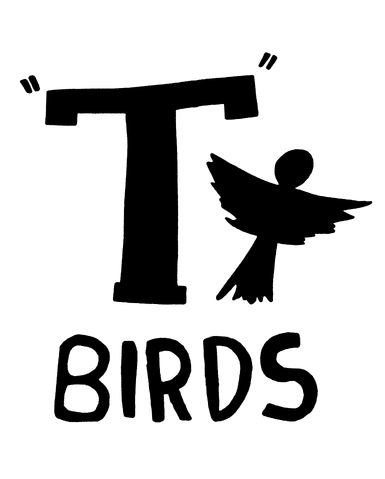 File:T-birds.png