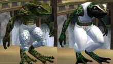 Race froglok