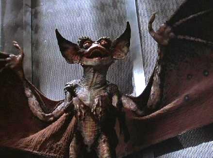 File:Bat.jpg