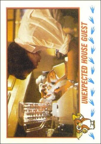 File:Topps Unexpected House Guest.jpg